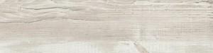 ABSB H1401 ST22 Pinie Cascina 43/2